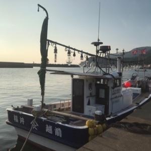 イカ釣り体験