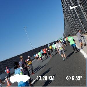 横浜でフルマラソンデビューしました~♪