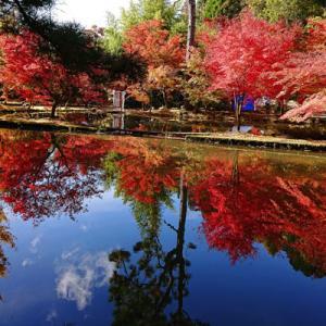 曽木の逆さ紅葉