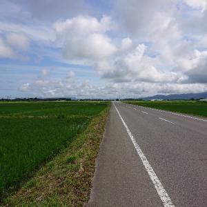 日本縦断徒歩の旅【東日本編14】中条~村上