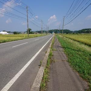 日本縦断徒歩の旅【東日本編28】琴丘~鶴形