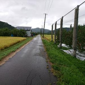 日本縦断徒歩の旅【東日本編33】大鰐~黒石~浪岡