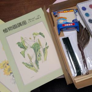 60の手習い~植物画を始めることにしました
