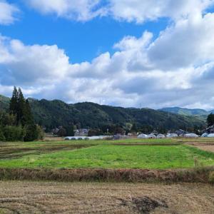 飛騨高山へ~ダイコンの収穫