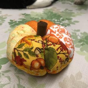 かぼちゃ君  その1