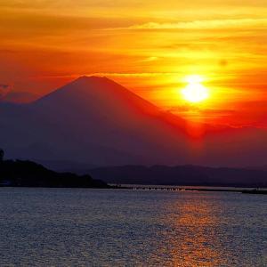 体調  &  富士山の夕日