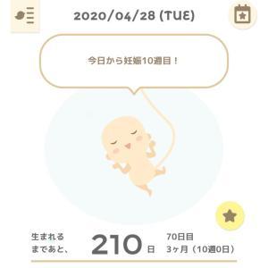 妊娠10週目、つわりじわじわ(軽いけど)