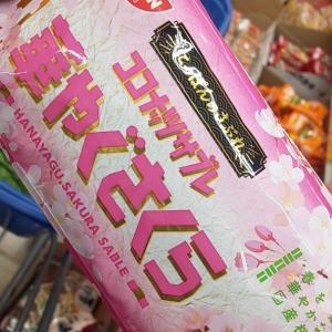 桜のお菓子?(*´ω`*)