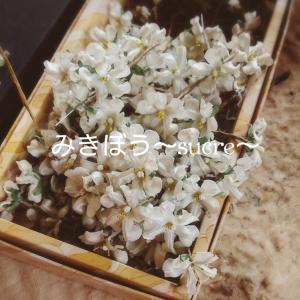★花らしく‥布花 兵庫県神戸★