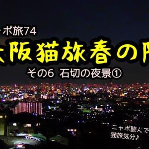 ニャポ旅74 大阪猫旅 春の陣 その6 石切の夜景①