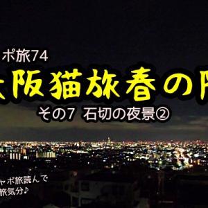 ニャポ旅74 大阪猫旅 春の陣 その7 石切の夜景②