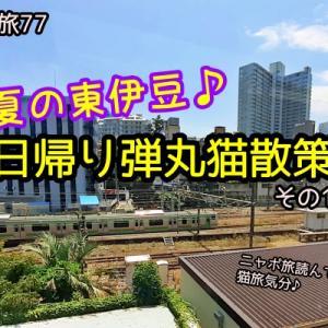ニャポ旅77 初夏の東伊豆♪日帰り弾丸猫散策 その1