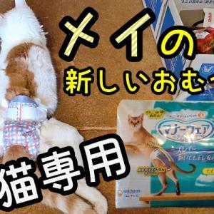 メイの新しいおむつは猫専用!やっと発売されたよ~♪