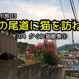 ニャポ旅83 夏の尾道に猫を訪ねて その4 夕ぐれ猫散策①