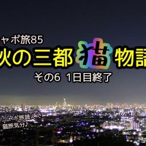 ニャポ旅85 秋の三都猫物語(大阪編) その6 1日目終了