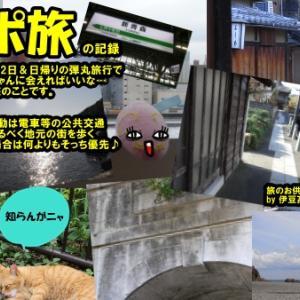 ニャポ旅77 初夏の東伊豆♪日帰り弾丸猫散策 その2
