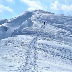 お久しぶりの 百名山 雪の荒島岳にGO!