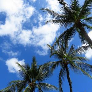 ハワイ、流れたデマ情報と買い占めパニック! 品切れが起こる物流事情は・・!!