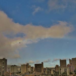 ハワイ、5つの幸運のシンボル大集合! 見ると大ラッキー!!