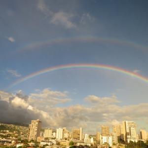 最近、ハワイで見ないのは・・アノせいかも! リップル効果・波及効果?