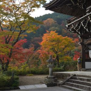 紅葉の善峯寺 2