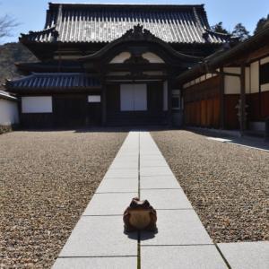 天野山金剛寺2