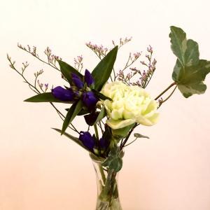ポストに届くお花の定期便Bloomee LIFE