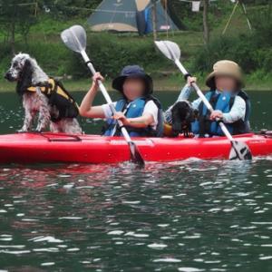 今年も四尾連湖でカヤック
