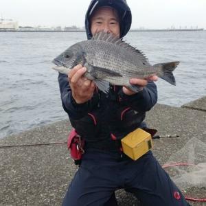 7月9日 川崎新堤
