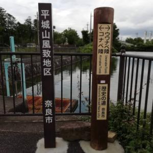 古墳見学(ウワナベ・コナベ・ヒシアゲ)