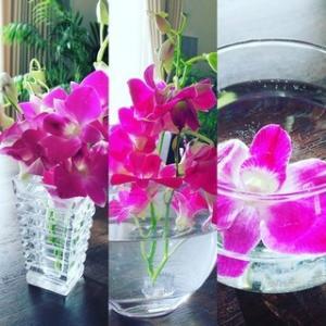お花を素敵に長く楽しむ方法