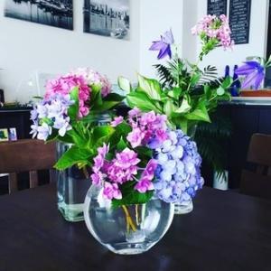今日のお花『フロックス、桔梗、紫陽花』