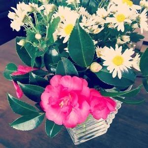 今日のお花『椿と菊』