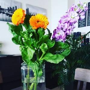 本日のお花『キンセンカとストック』