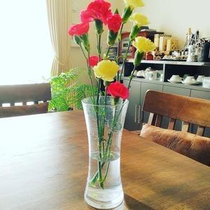 今日のお花『カーネーション』