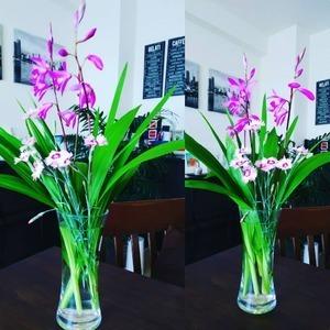 今日のお花『紫蘭と撫子』