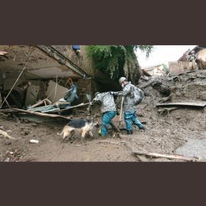 自衛隊と救助犬