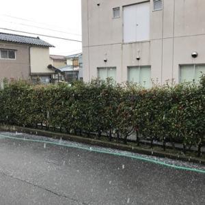 2月は寒い日が多かった