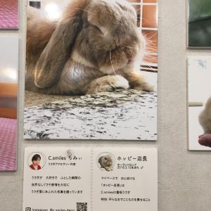 うさぎしんぼる展東京開催中‼️