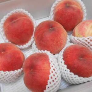 福島の桃が届きました