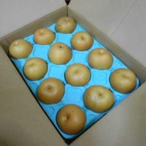 福井県の梨&生鮭と野菜のソテー