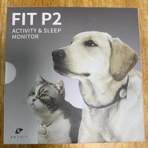 ペットの活動量計FIT P2で健康管理―「もなか」の運動不足がはっきりと