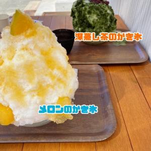 9/20かき氷