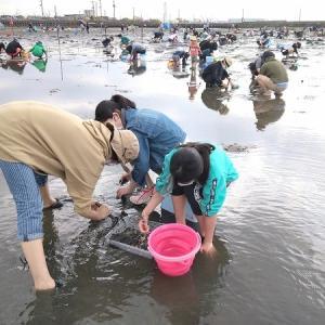 2021年潮干狩り初戦は牛込海岸でアサリ豊漁