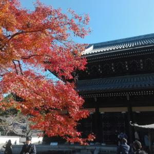 京都①南禅寺~西尾八ツ橋の里