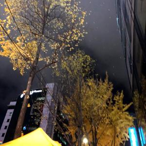 残念!!でも、大満足のお買い物♪@東大門【2019年11月ソウル旅行】