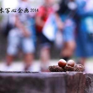 写壇桐友会さんと「ぐんま昆虫の森」撮影