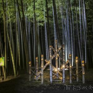 フォト・クルール「若竹の杜 若山農場」撮影