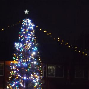 ありがとうクリスマスツリー!