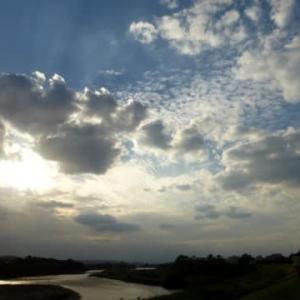 「普通の秋」に戻ったと言いたいが…多摩川秋景色シリーズ